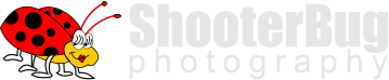 ShooterBug photography